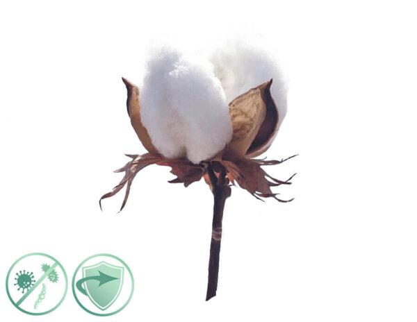 soft cotton dezinfekcny aroma olej